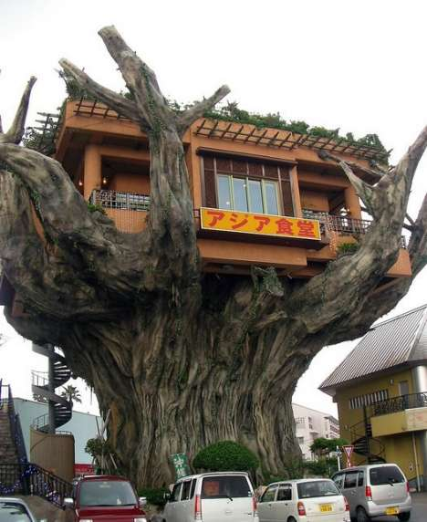 Tree house designs - Treehouse plans and designs ...